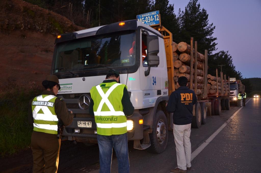 Fiscalización Carretera a Transportes Madereros en la Región