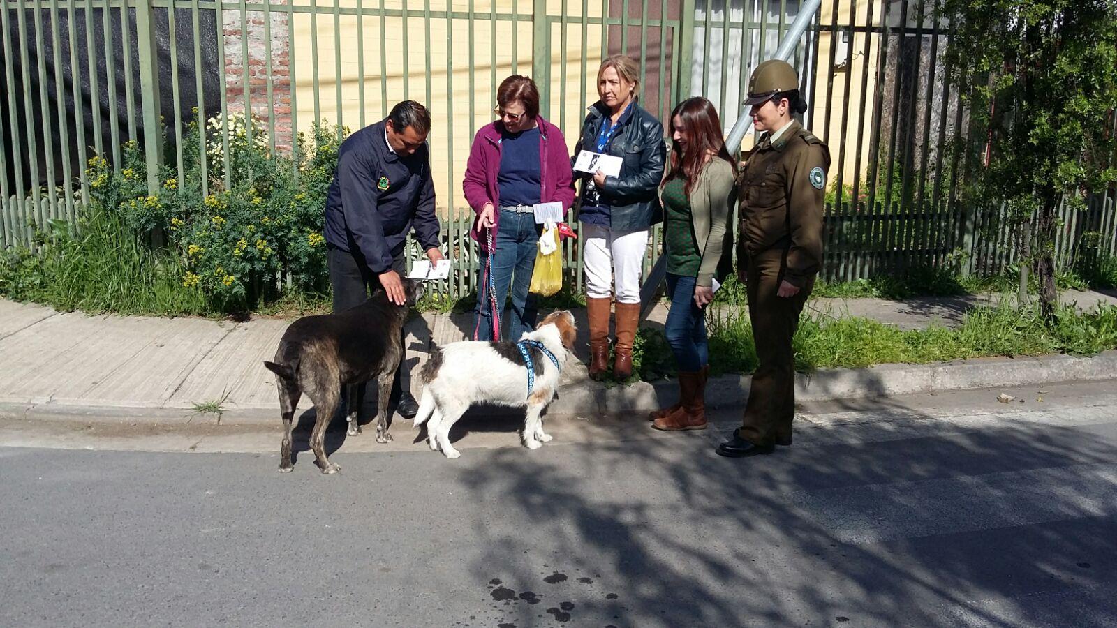 Impulsan campaña de tenencia responsable de mascotas