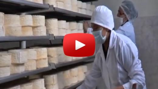 [Video] Seremi de salud del Maule y SERNAC, fiscalizan queserías en Talca, procediendo a la clausura de alguna de ellas.