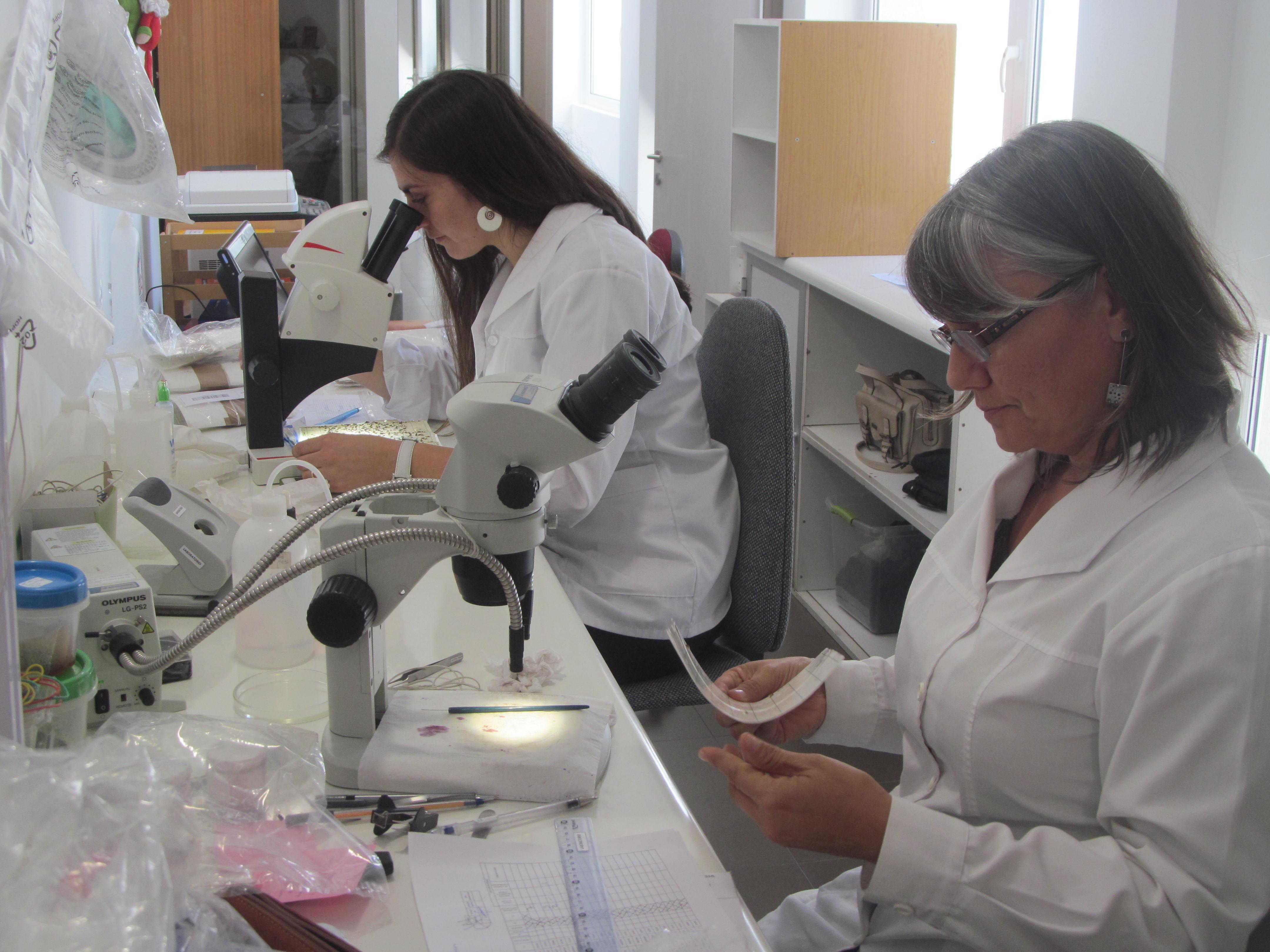 Abren nuevo laboratorio regional de Lobesia Botrana