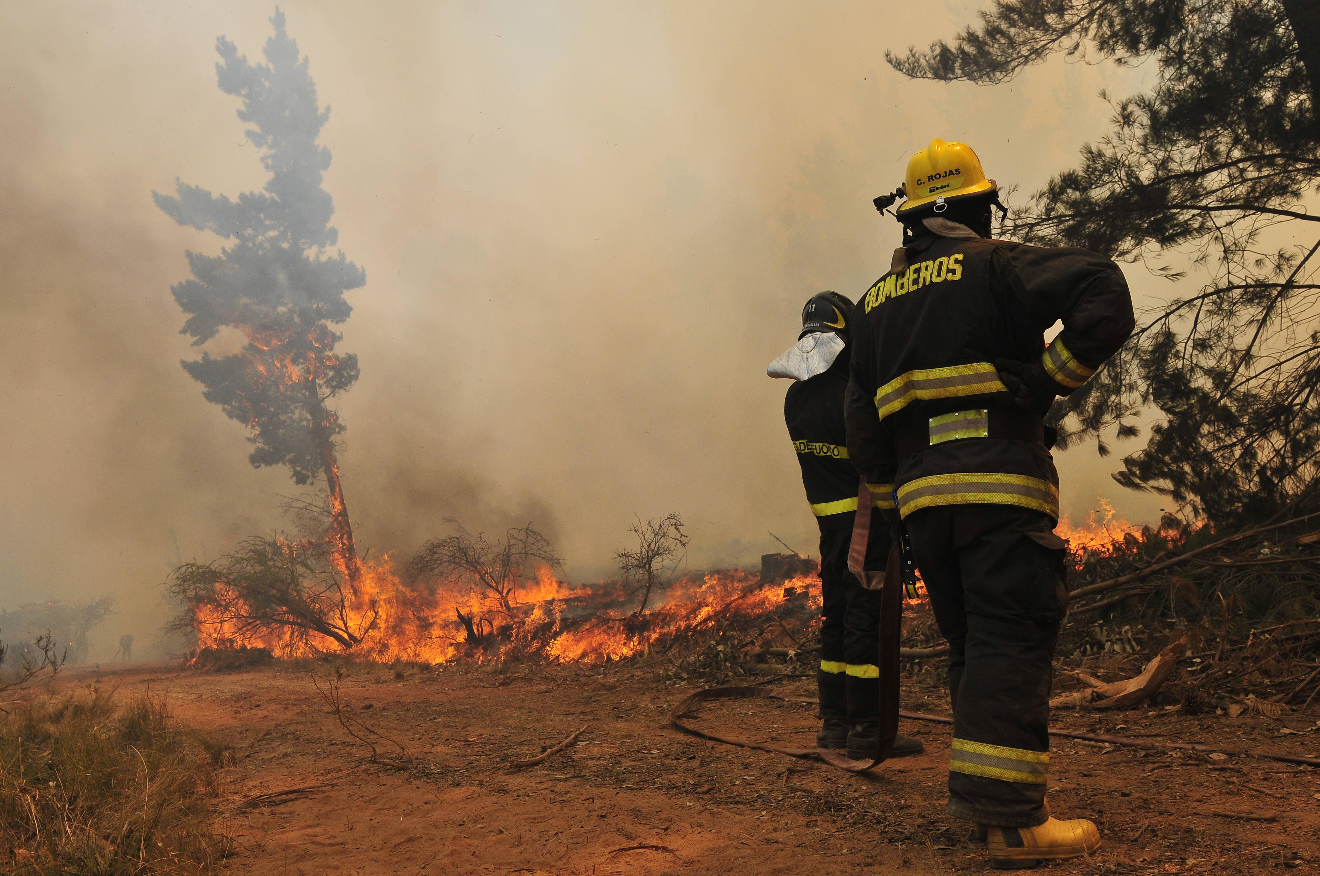 Declaran alerta amarilla comunal por incendio forestal en cajón de Pejerrey en Linares