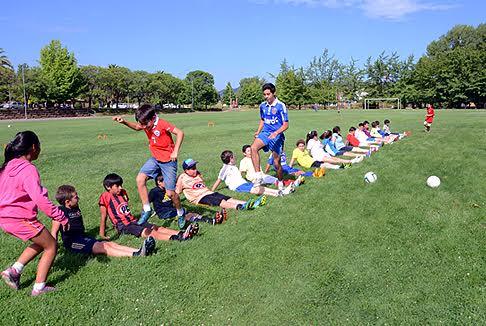 El 4 de enero comienzan las Escuelas Deportivas de verano de la UTALCA