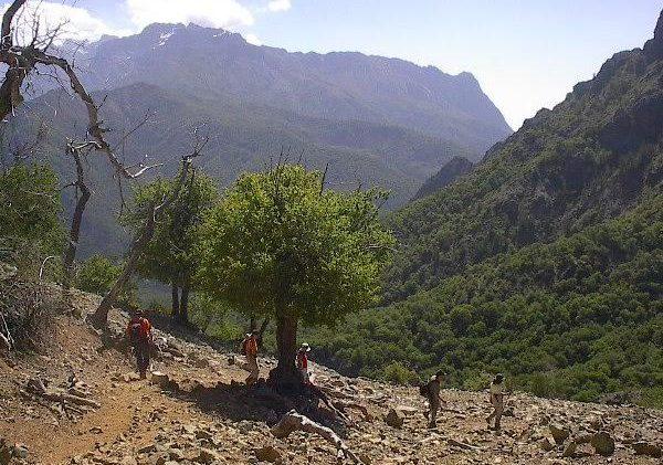 """Reserva Nacional """" Los Bellotos del Melado"""" cuenta con 300 nuevas hectáreas"""