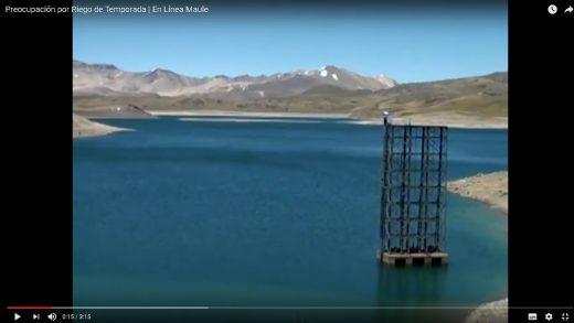 [Video] Preocupación existe en los regantes de la cuenca del Maule por la escasa acumulación de agua en los principales embales.