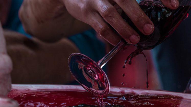Viñas del Maule en Vendimia de Ñuñoa busca potenciar los productos turísticos de la región