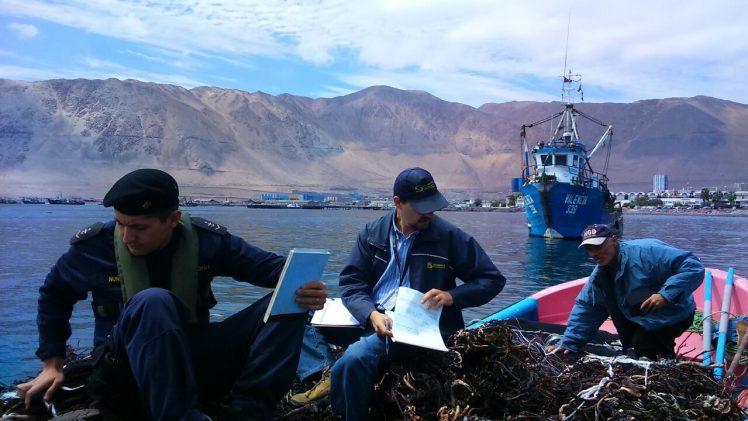 Sernapesca hace un llamado a los pescadores a actualizar sus datos en registro pesquero