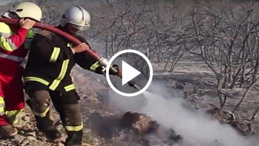 Seguidilla de incendios forestales en el Maule, obligó a reunión urgente convocada por el intendente Pablo Milad.