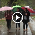 Anuncian lluvias para el Maule y bajas temperaturas para la próxima semana