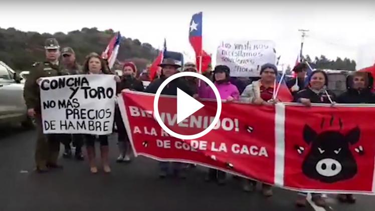 Viñateros del Maule y Biobio, protestan en ruta 5 sur, por colusión de grandes viníferas, para pagar bajos precios por kilo de uva.