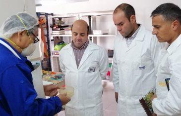 Profesores maulinos obtiene certificación internacional en control biológico de plagas