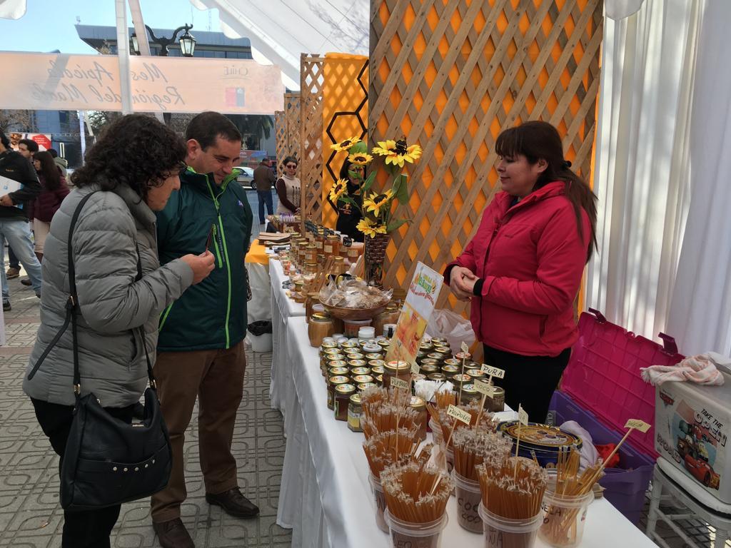El Maule es la tercera región con mayor producción de miel en el país