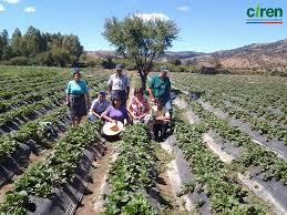 Minagri lanzó plan de acción rural para apoyar a los agricultores
