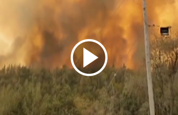 En el incendio de Molina se tomaron las medidas para evitar daño a las viviendas y al parque nacional Radal 7 tazas.