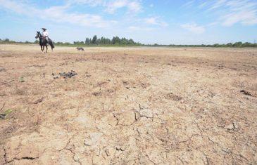 Municipio de San Javier solicita al gobierno decretar emergencia agrícola por déficit hídrico