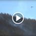 Incendio del cerro de la virgen en Talca ha consumido 40 hectáreas