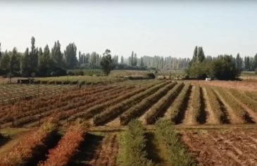Ministerio de agricultura implementa nuevas medidas para fomentar el aislamiento social y con ello disminuir el riesgo de contagio, producto del covid-19.