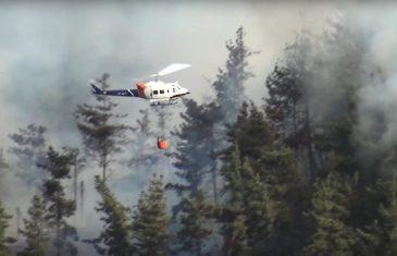 """Conaf informó que está controlado el incendio de """"Loma Pelada"""" en Curicó"""