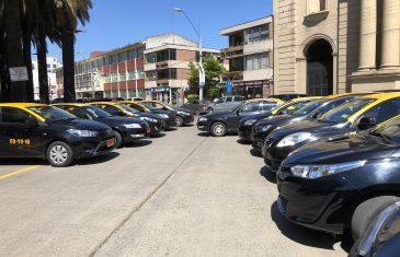 Curicó se adjudicó los primeros cupos de apertura de parque para taxis básicos