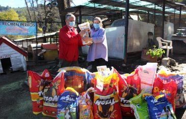 Servicio de Salud Maule donó 281 kilos de alimento a Refugio de perros Francisco de Asís.