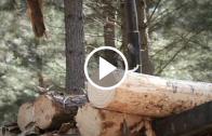 Se reactivó la mesa de la madera: En la ocasión se anticiparon estrategias claves como la asociatividad, valor agregado y la prevención de incendios forestales en la próxima temporada estival