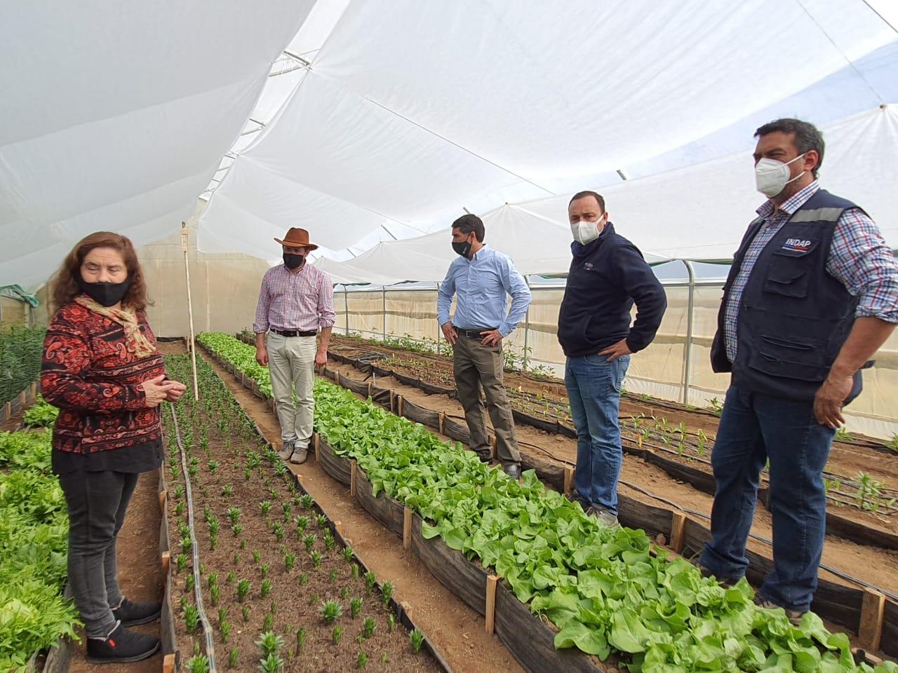 Seremi de Agricultura destacó trabajo asociativo de floristas de Río Claro