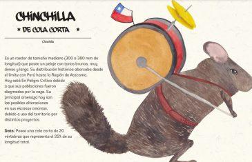 """En Fiestas Patrias el Ministerio de Medio Ambiente te invita a """"Colorear tu Fauna"""" con especies únicas en Chile"""