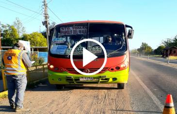 156 servicios de transporte gratuito estarán disponibles en el Maule para el día del Plebiscito