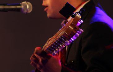 Seremi de las Culturas invita a bandas y solistas del Maule a desarrollar propuestas artísticas para celebrar el Día de la Música y los Músicos Chilenos