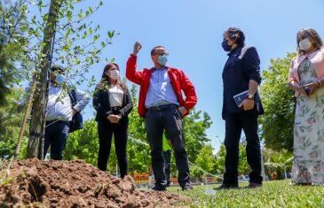 Inicia plantación de 100 árboles nativos en Sagrada Familia gracias  a proyecto social