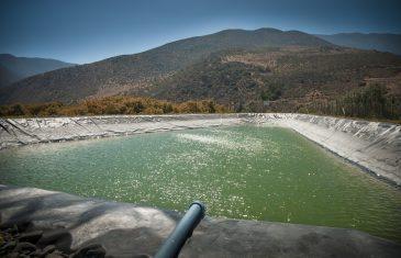 Agricultura familiar campesina contará con un fuerte incremento en presupuesto para proyectos de riego en 2021